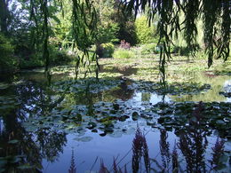 Jardin d'eau pittoresque de Claude MONET , heidemarie m - August 2015