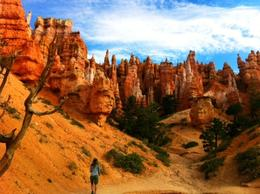 Photo of Las Vegas 7-Day Camping Tour: Bryce Canyon, Salt Lake City, Grand Tetons, Yellowstone and Provo from Las Vegas Bryce Canyon Hoodoos