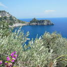 Photo of Naples Naples Shore Excursion: Private Tour to Sorrento, Positano, and Amalfi DSCN0060
