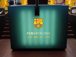 Photo of Barcelona FC Barcelona Football Stadium Tour and Museum Tickets DSCN2778.JPG