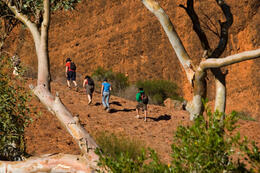 Photo of   Guided hike around Uluru, Ayer's Rock, in the Red Centre Desert