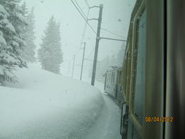 Blankets of snow, amazing sight! , Lin M - April 2012