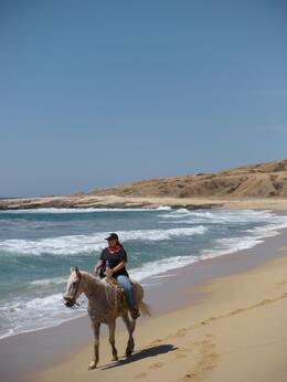 Photo of Los Cabos Los Cabos Horseback Riding Scenic Views