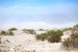 A little bit windy for the dunes, but still a great experience there , Todd K - May 2011