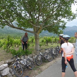 Photo of Dubrovnik Konavle Valley Small-Group Bike Tour from Dubrovnik croatia Mtn. Biking