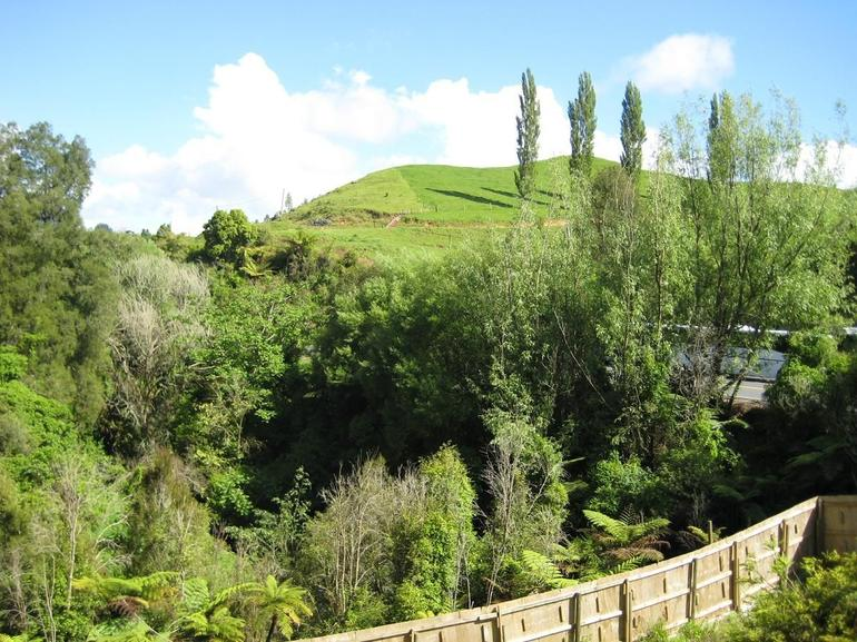 New Zealand Countryside - Auckland