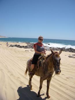 Photo of Los Cabos Los Cabos Horseback Riding Ready for our ride!