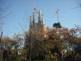 picture of the Sagrada Familia Bascilca , Matthew T - March 2014