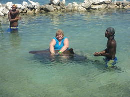 holding the shark in dolphone cove,jamaica. , helen d - November 2012