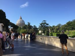 Looking at the Dome of St. Peters Basilica and listening to the explanation of the base , avon63 - May 2016