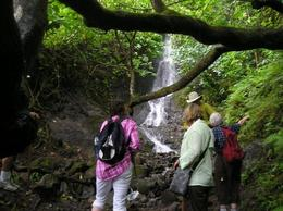 Photo of Oahu Manoa Waterfall Small Group Adventure Falls