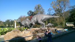 Photo of Atlanta Atlanta CityPass Fernbank Museum