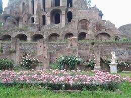 Photo of Rome Skip the Line: Ancient Rome and Colosseum Half-Day Walking Tour Forum antique