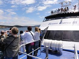 Photo of Seattle Friday Harbor Day Trip & Whale Watching from Seattle View from the Bow