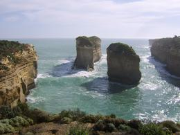 Photo of Melbourne Great Ocean Road Small Group Eco Tour from Melbourne View near the Twelve Apostles