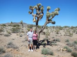 Alexandra and Mike before Joshua tree at re-fueling point. , Alexandra D - October 2013