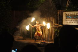 Photo of Singapore Singapore Zoo Night Safari Tour with optional Buffet Dinner Fire show