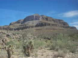 Photo of Las Vegas Grand Canyon West Rim Day Trip by Coach, Helicopter and Boat with Optional Skywalk Joshua Tree Forest