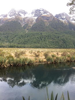 Photo of Queenstown Milford Sound Full-Day Tour from Queenstown Mirror Lakes