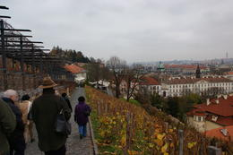 Photo of Prague Full-Day Tour to Prague Castle and Vltava River Cruise with Lunch on our way down for lunch