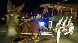 Photo of New Orleans Private Haunted Carriage Tour in New Orleans Robin and Aretha