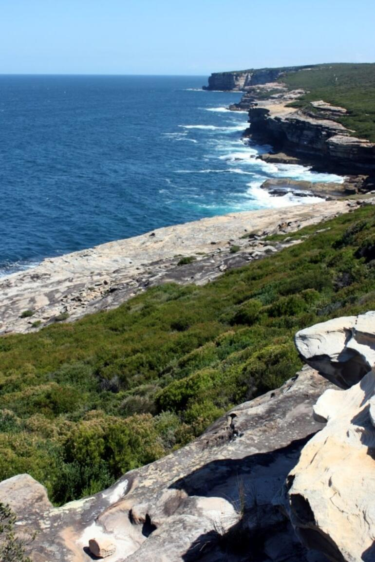 Royal National Park -