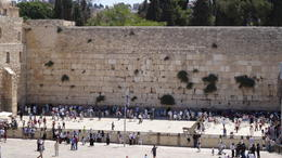 Photo of Tel Aviv Day Tour to Jerusalem and Bethlehem from Tel Aviv The Western Wall (Wailing Wall)