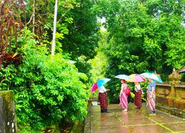 Photo of Bali Bali Pura Luhur Batukaru Temple and Cultural Small Group Tour Tropical rain storm at Bali Pura Luhur Batukaru Temple