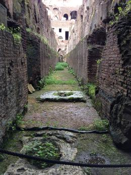 Photo of Rome Skip the Line: Ancient Rome and Colosseum Half-Day Walking Tour Underground