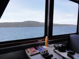 Photo of Seattle Friday Harbor Day Trip & Whale Watching from Seattle View from Inside