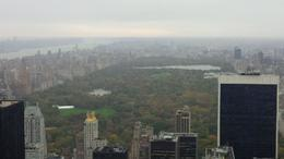 Although a rainy day, we still had a good view of the Park facing north, and of course, the rest of Manhattan on the other side of the viewing area. , Bruce L - November 2014