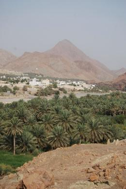 Wadi on the way to Nizwa. - October 2008