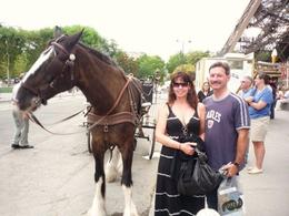 My husband and I loved the horse so much we needed to have our picture taken with him!, Beth S - August 2009