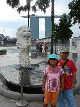 Photo of Singapore Singapore City Tour with optional Singapore Flyer sensational 'casino'