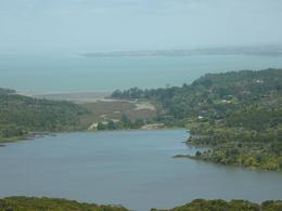 Photo of Auckland Auckland Highlights combined with Wilderness Experience Eco-Tour View from Arataki Centre