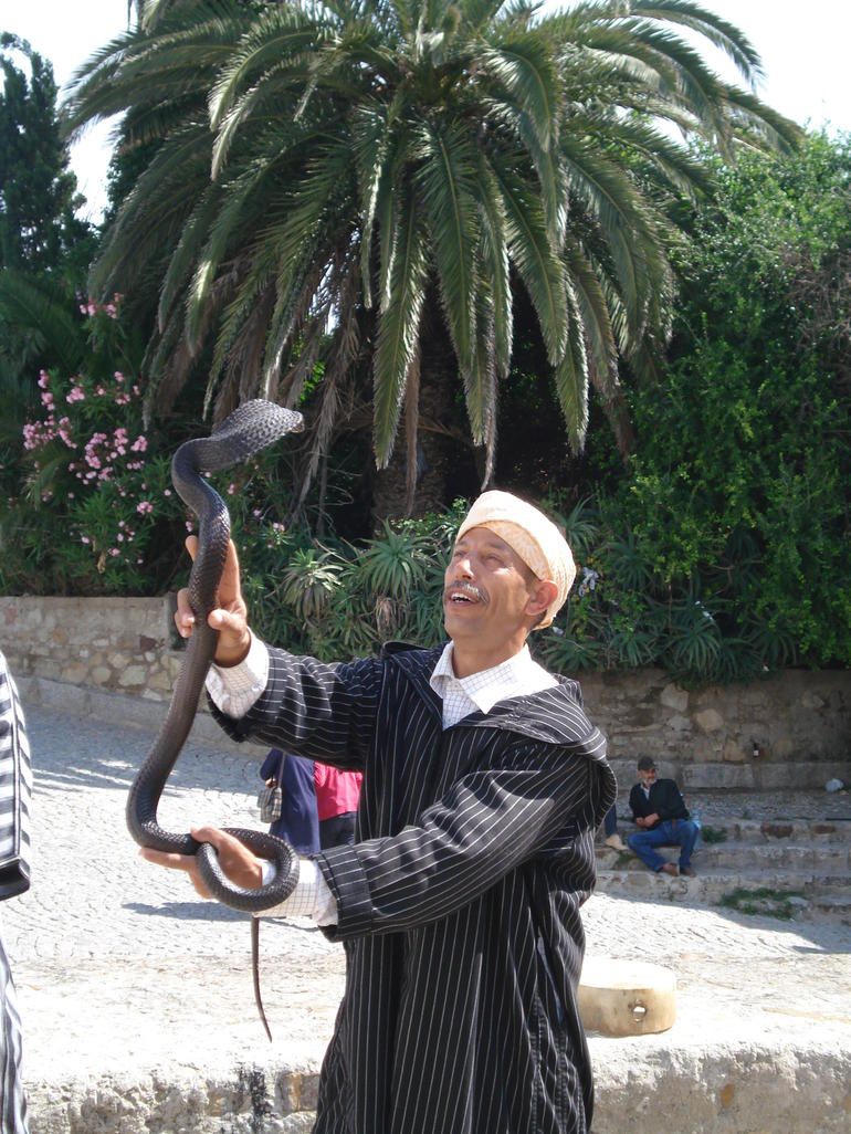 Playing with a cobra in Morocco - Costa del Sol