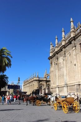 The start of our wonderful day in Seville , Marsha N - November 2015