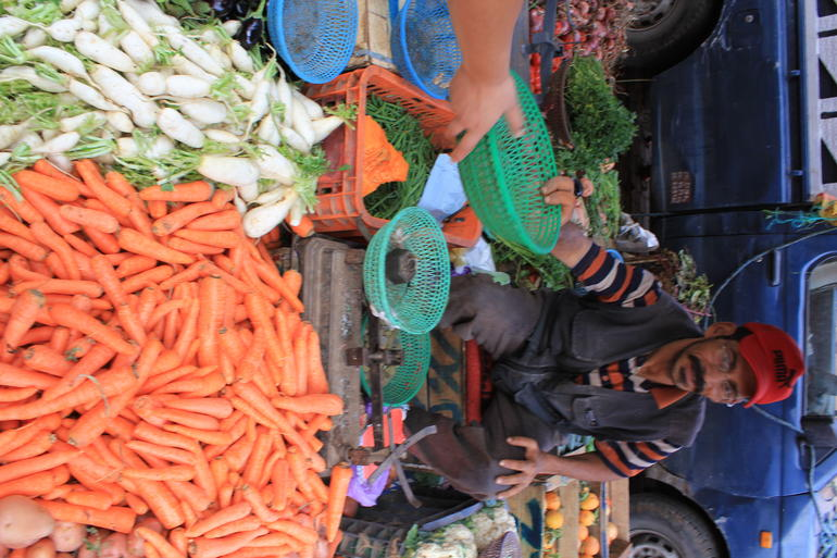Shopping for ingredients in the market - Marrakech