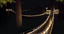 Photo of Vancouver Winter Wonderland Adventure at Vancouver's Capilano Suspension Bridge treetops walk at night