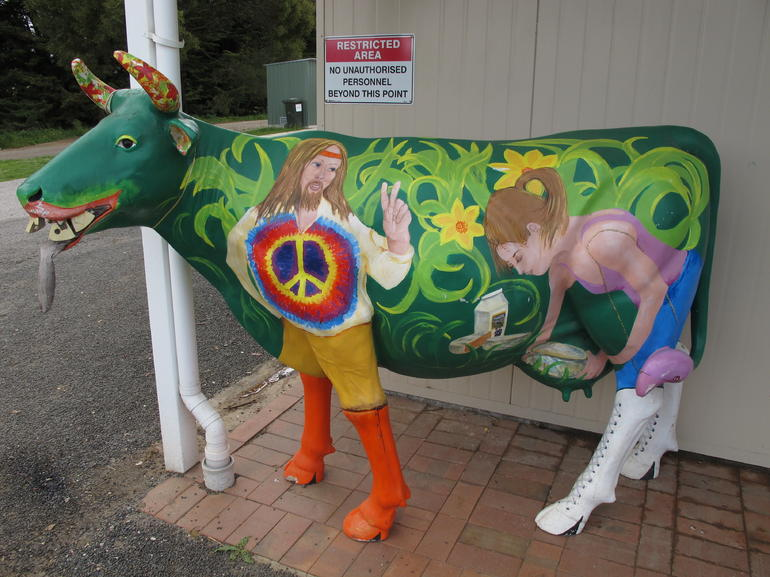Another Cow Sculpture - Tasmania