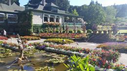 Photo of Vancouver Vancouver to Victoria and Butchart Gardens Tour by Bus Beautiful part of the garden with a pond.