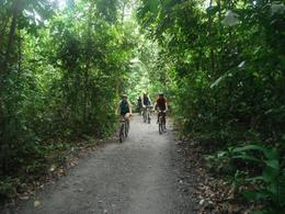 Photo of Singapore Singapore Bike Adventure around Pulau Ubin Bike Trail