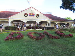 dole plantation , anette - January 2012