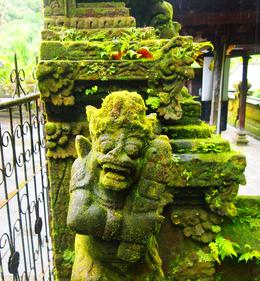 Photo of Bali Bali Pura Luhur Batukaru Temple and Cultural Small Group Tour Moss covered statue at Bali Pura Luhur Batukaru Temple