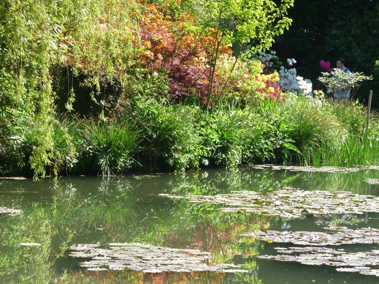 Water Lily Garden at Monet's House - Paris