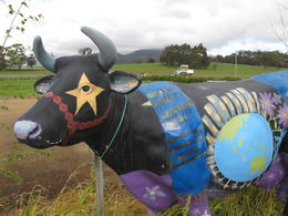 Photo of Launceston Cradle Mountain National Park Day Tour from Launceston Cow Sculpture 3