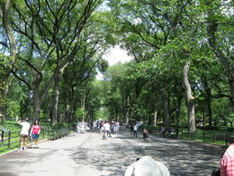 "This part of Central Park is referred to as ""The Mall"" Such movies have been shoot here as Friends with Benefits, Big Daddy, Kramer vs. Kramer, and When Harry Met Sally. , K and A - August 2012"