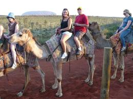 Photo of Ayers Rock Uluru Camel Express, Sunrise or Sunset Tours Me on the camel