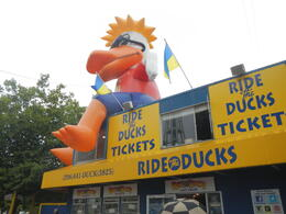 Photo of   Ride the Duck!