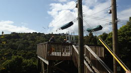 Waiheke Island Exploration and Zipline Day Trip from Auckland , Brittany T - October 2013